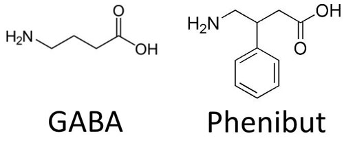 Phenibut Nootropic Supplements Review – Does GABA Work?