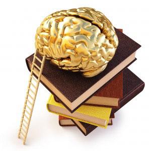 brain-power-now