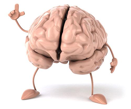 brain-nootropics-health